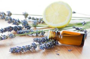 plante-anti-moustique-remède-naturel-alternatif-huile-essentielle-lavande